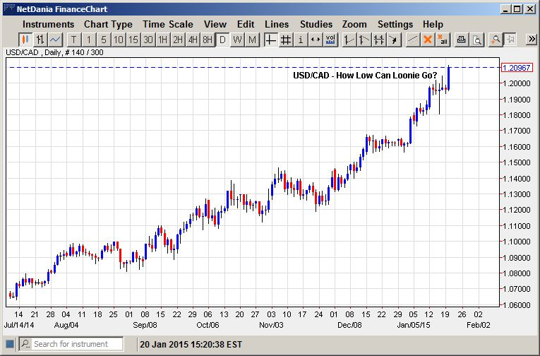 How Low Can Loonie Go?